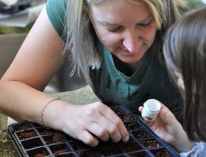 Planting Flowers With a SproutBrite Seed Starter Kit | Fern and Maple Events and Party Blog