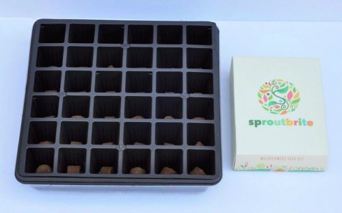 Sprout Brite Seed Starter Kit | Fern and Maple Events and Party Blog