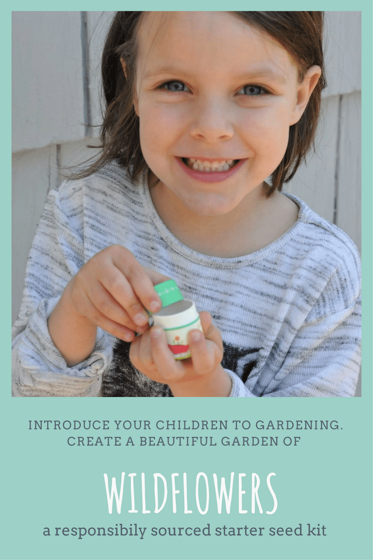 Teaching Your Kids to Garden With a Seed Starter Kits | Fern and Maple Events and Party Blog
