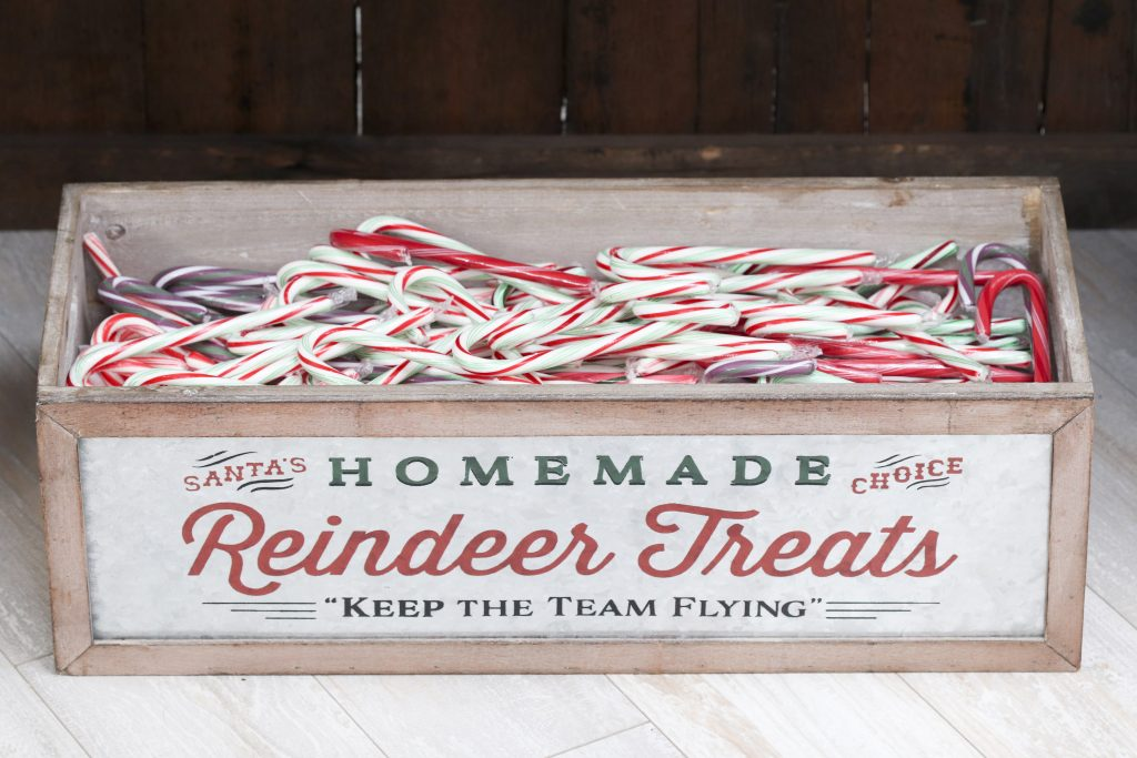Pom Pom Party for the Holidays reindeer treat candy canes